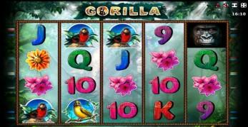 Игровой Автомат Poker Olymp